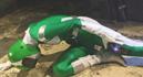 Special Unit Bionic Force Destruction & Violated012