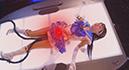 Damaging Heroine 05 -Sailor Hermes AQUA 006